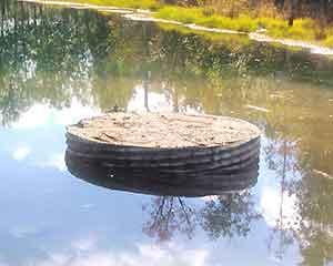 pond-dam